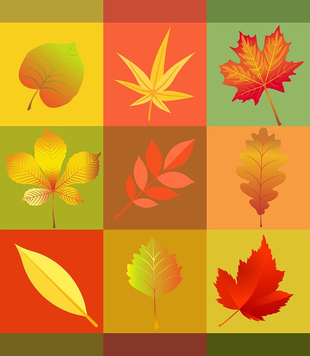 Drukowanie jesiennych dekoracji