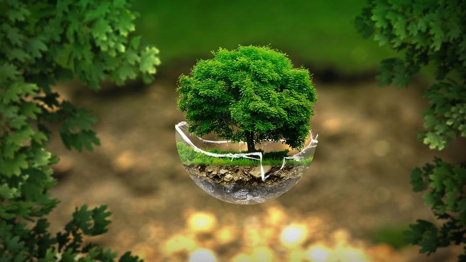 Drukowanie przyjazne środowisku